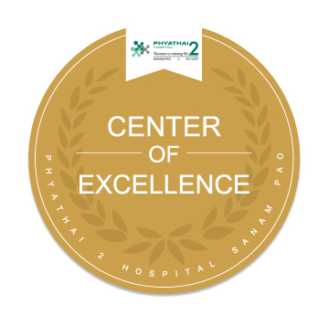 2 it center of excellence